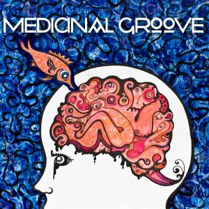 Medicinal Groove @ City Park Grill | Petoskey | Michigan | United States